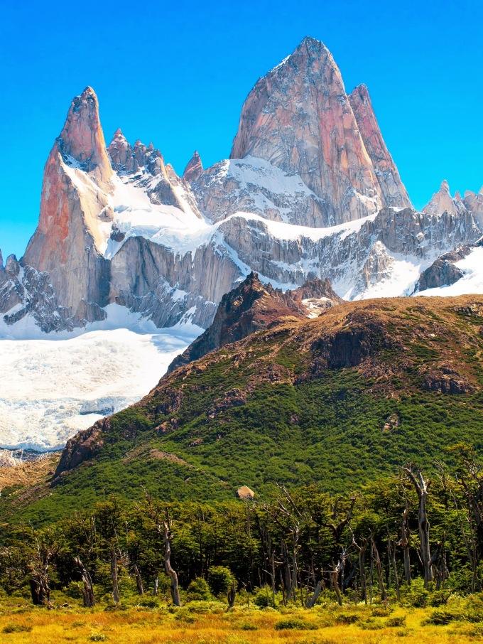 patagoina